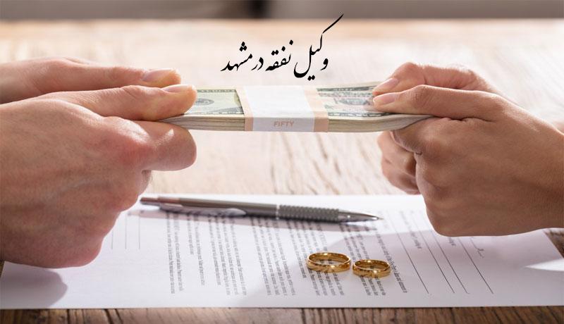 وکیل نفقه در مشهد | بهترین وکیل نفقه در مشهد | وکلای برتر مشهد